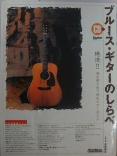 Bluse Guitar.jpg
